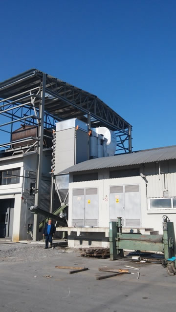Cyclone for dedusting a biomass fired boiler
